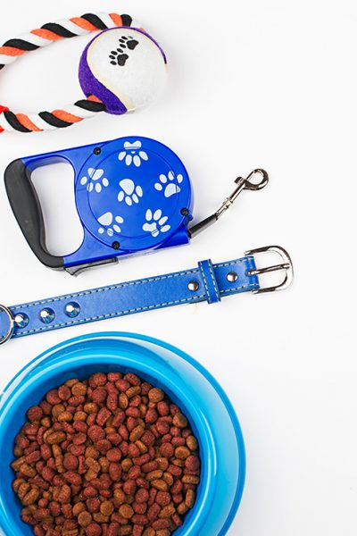 Pet storage isn't a problem anymore. Learn how to organize all your pet supplies - including food, toys, and dog clothes - in this simple guide.