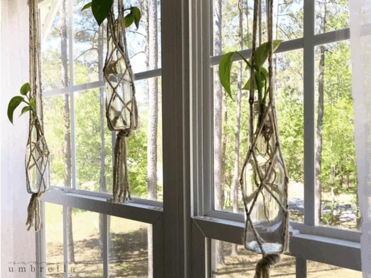 DIY hanging planter out of macrame